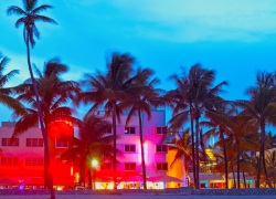 MIAMI NIGHTLIFE PACKAGE