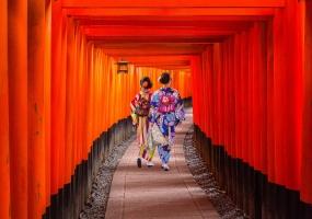 G ADVENTURES - ICONIC JAPAN