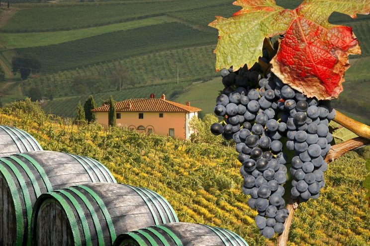 Italy Food & Wine Tour