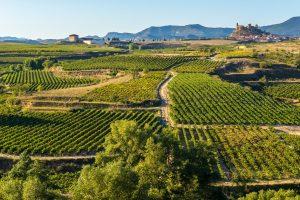 San Vicente de la Sonsierra La Rioja